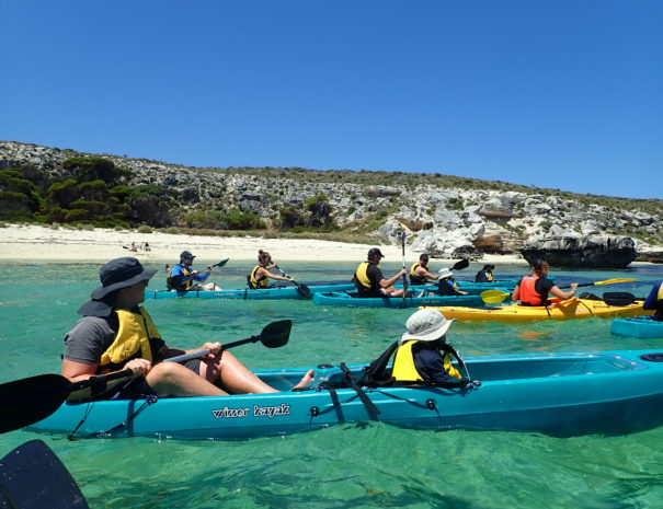 Glass Bottom Kayaking Tour