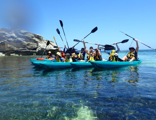 Group Tours Rottnest Island