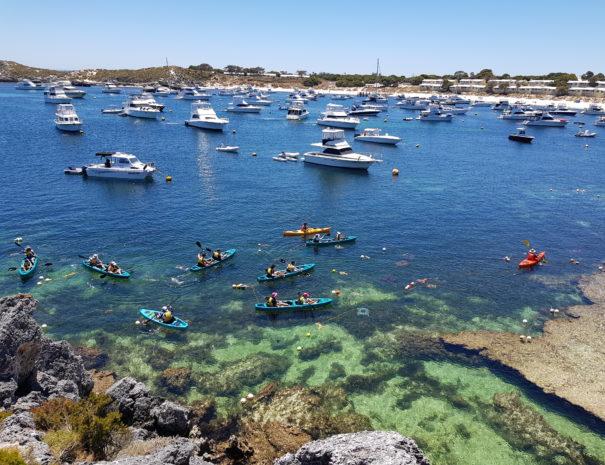 Glass bottom kayak tours of Rottnest Island