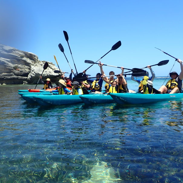 group tours rottnest